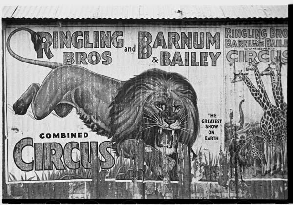 Cartaz de circo de 1936